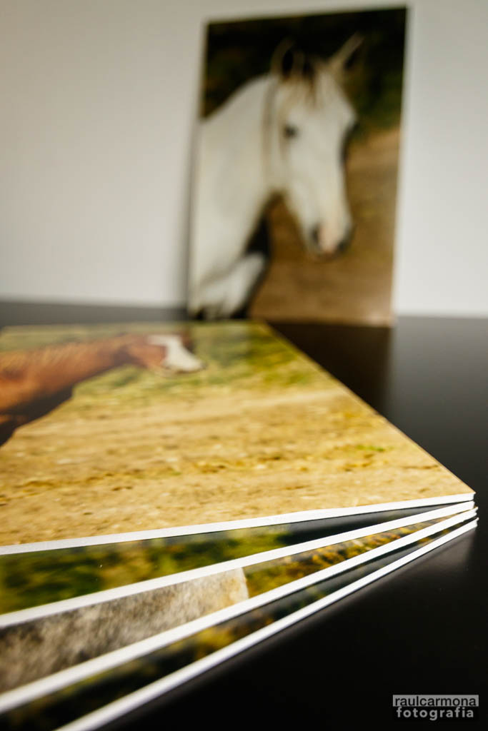 Fotos cartró-ploma